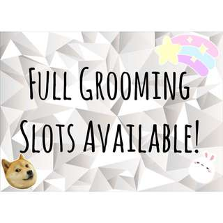 Full Grooming for Dogs