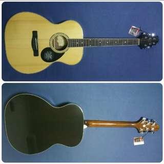 Samick Guitar GOM-100