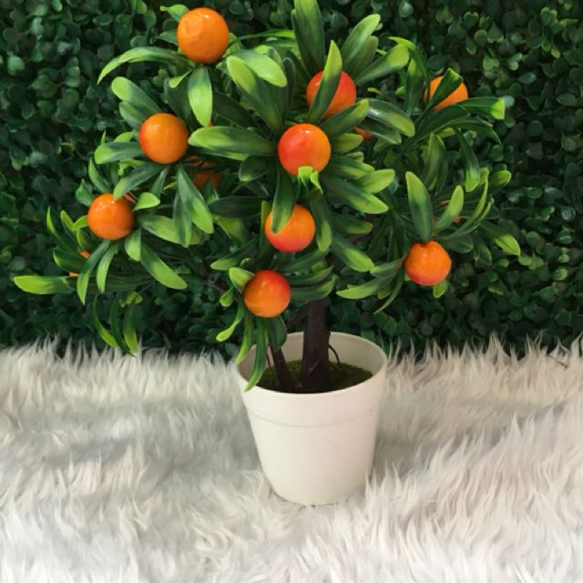 Artificial mini plant with different designs