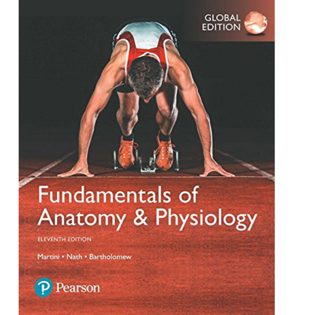 Fundamentals of Anatomy and Physiology Global Edition 11th Edition ...