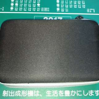 3ds Carrying Case