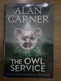Story book The Owl Service by David Gartner