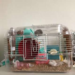 Hamster + whole cage