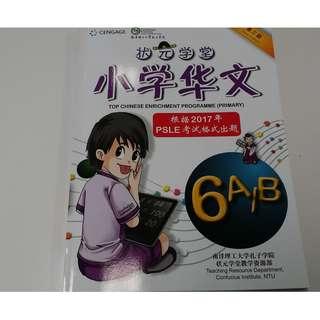 P6 状元学堂 (Latest edn)