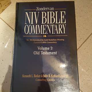 NIV bible Commentary