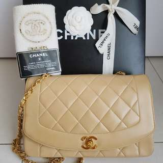 Chanel Diana Flap 10""