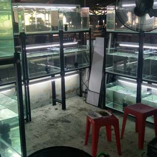 Fish tank and rack 60x30