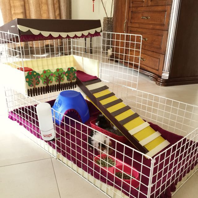 Customized pet cage (medium)