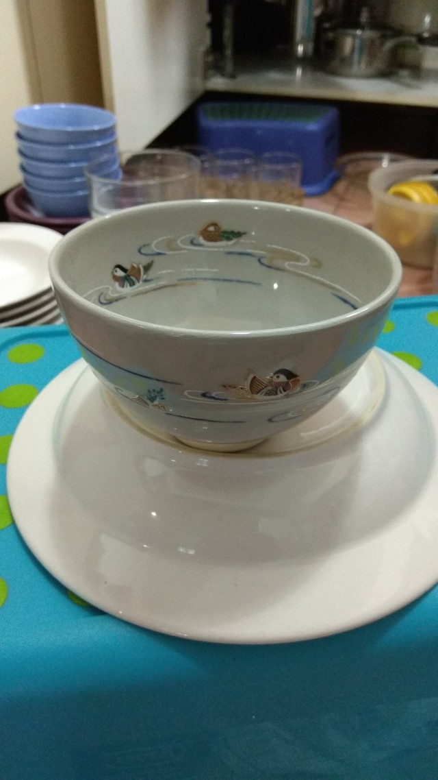 Oriental duck painting bowl