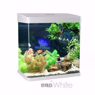 All In One Glass Fish Tank With Led Light n Filter