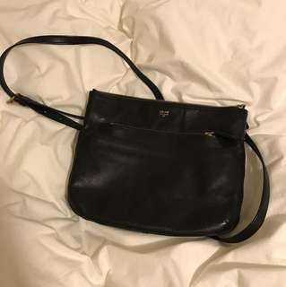 Fossil crossover purse