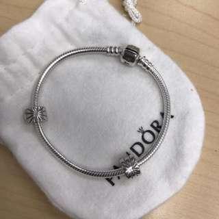 Pandora bracelet with 2 clips(18 inch)