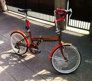 Customized folding bike