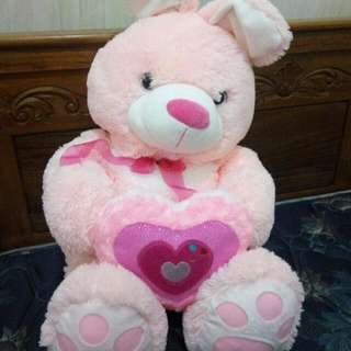 Teddy Bear Pink NEW