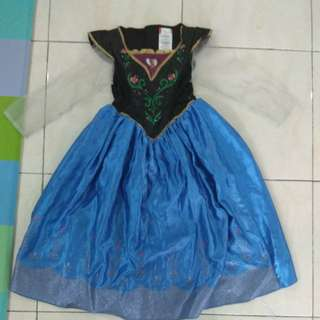 Anna dress/costume