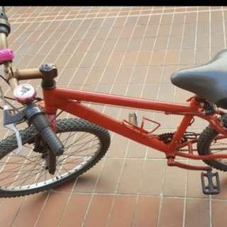 Bicycle adult medium