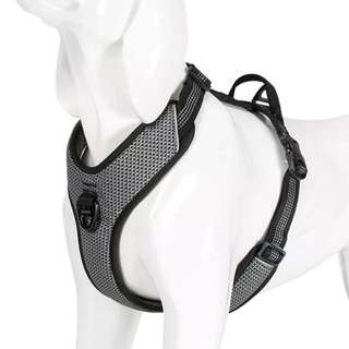 Puppy/Small dog 3M Reflective Harness