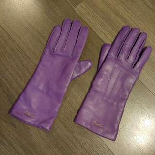 $1700 >>> $800 NEW COACH LEATHER GLOVE