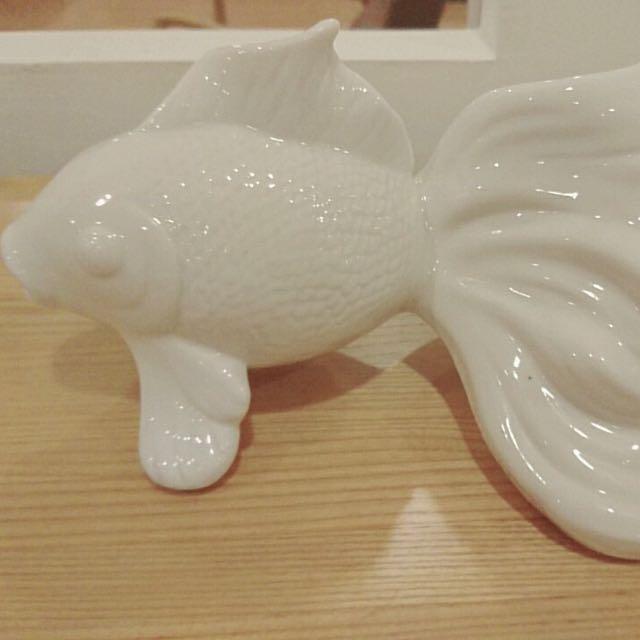 擺放魚儲蓄罐