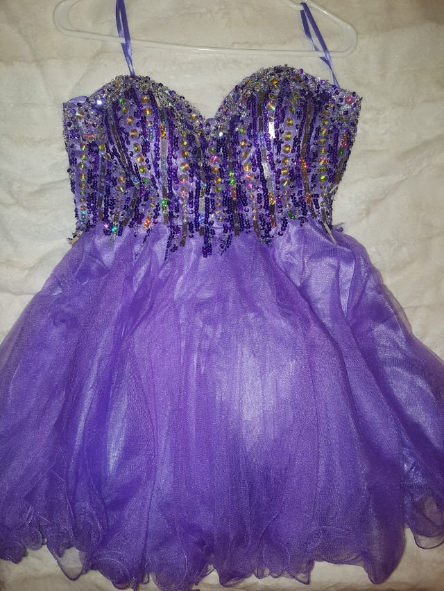 Beautiful Purple Large Dress (Prom)