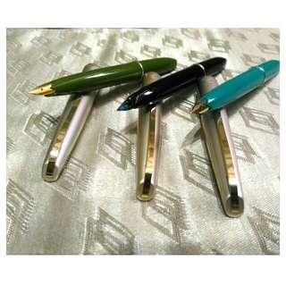 Platinum 200 Fountain Pen