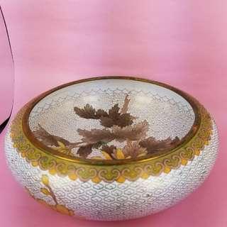 小黃菊水仙花盆