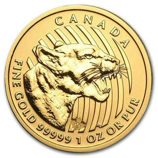 Canadian Growling Cougar Gold Coin 1oz