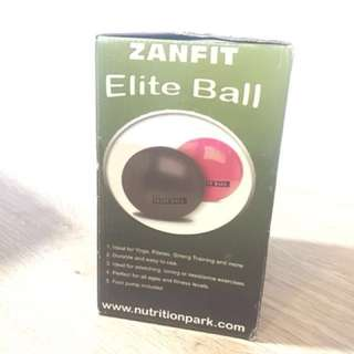 BN Gym Ball by Zanfit