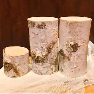 For Rent: Birch tree trunk slices