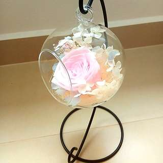 DIY Everlasting Flower Dome Preserved Real Flower
