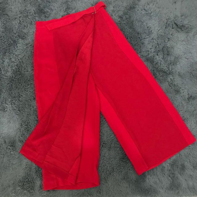 Zara long Skirt Pants