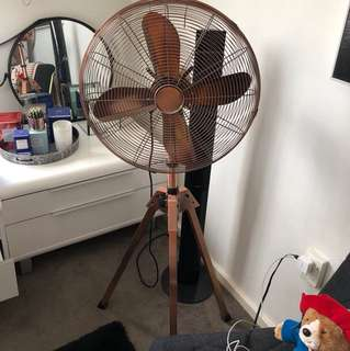 Rose Gold Stand up fan