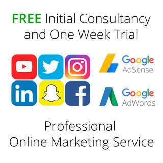 Professional Online Marketing Service