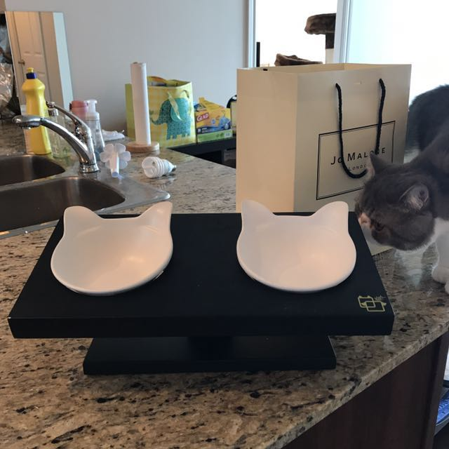 Cat bowl stand and cat bowls x3