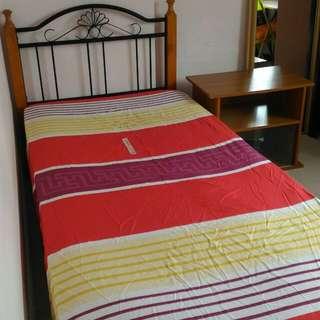 Ang Mo Kio 474 Small Room