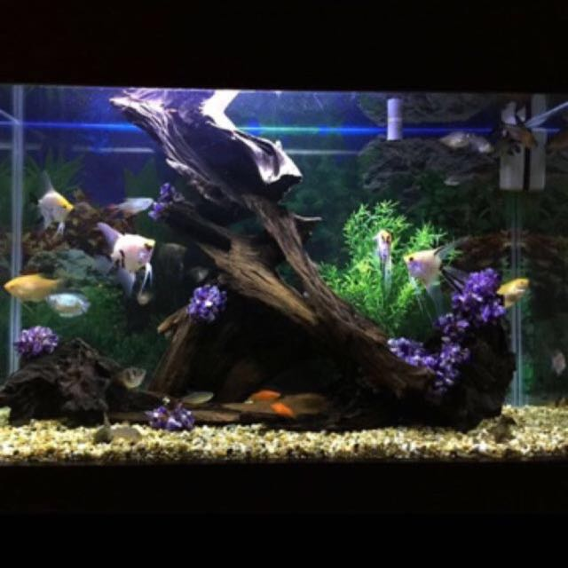 Mix Color Stone Substrate Gravel Deco / Aquarium /