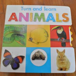 Children board book