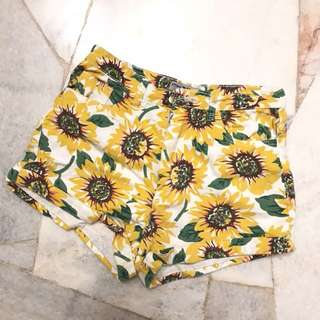 American apparel sunflower shorta