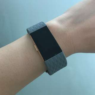 Fitbit Charge 2 Grey Straps in 'L'