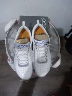 ECCO health shoes
