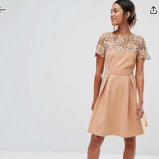 Petite size party dress for with lace details