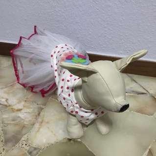Dog pink white dress