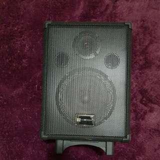 Martin Roland MAU 8 Portable Amplifier