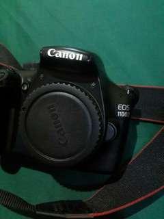 Canon D100 + handycam