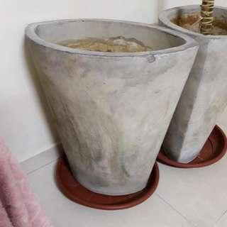 Pot Natural Cement Finish