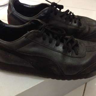 Puma cell limited edition