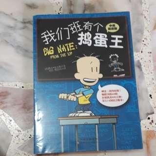 Chinese Book Big Nate