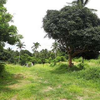 Farm Lot For Sale in Sinaliw Alfonso Cavite