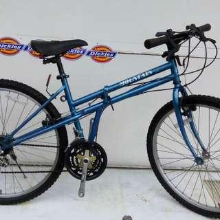 Blue folding mountain bike