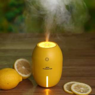 Portable Travel Air Humidifier Mist Moisturizing Vaporizer Ultrasonic Diffuser Humidifier with Night Led Light Cool Home Car USB
